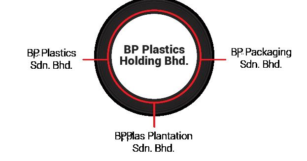 BPPlas-Group-Structure-v2